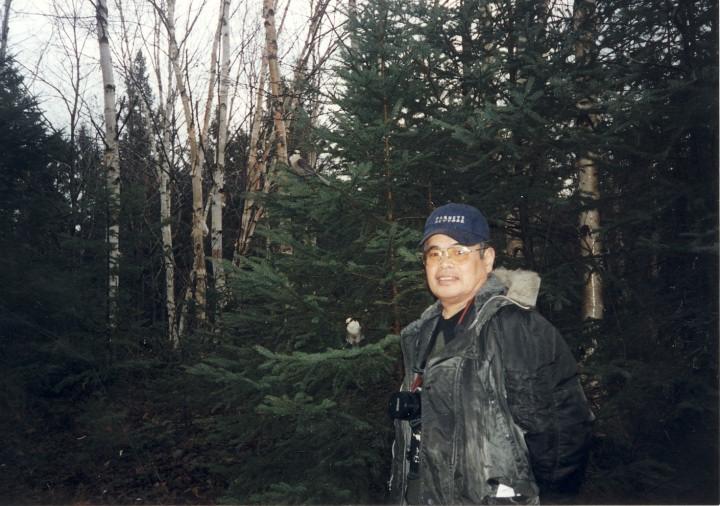 カナダ・アルゴンキン国立公園 中央にカケス2羽